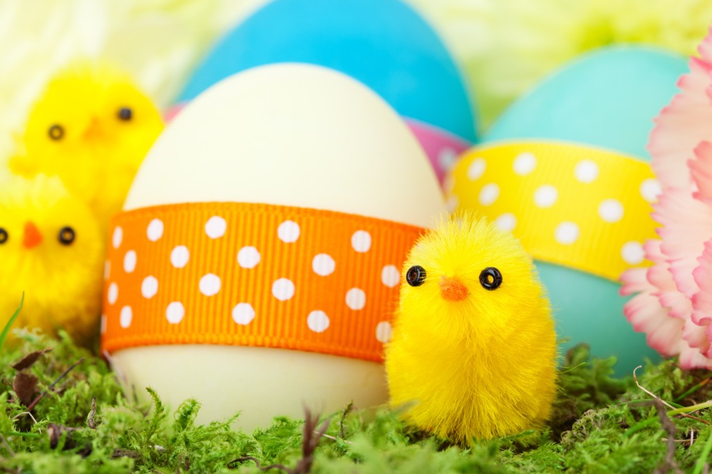 chicks_and_easter_eggs_196582